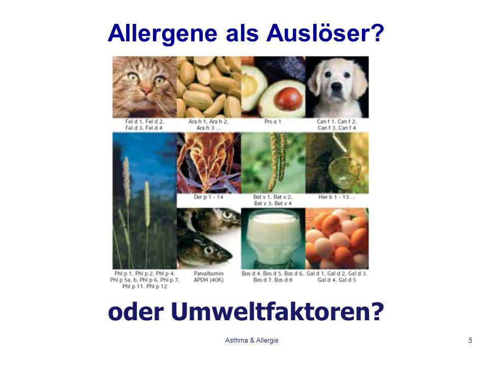Asthma & Allergie6 Allergene: Einteilung Aeroallergene Stoffe, die durch die Luft transportiert werden, z.B.