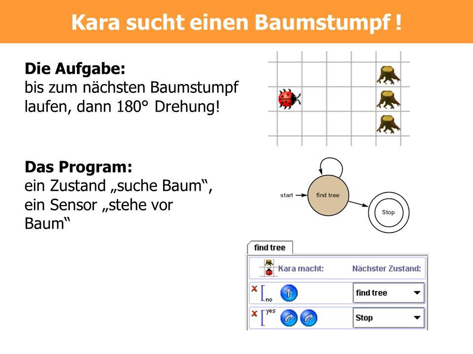 Das Program: ein Zustand suche Baum, ein Sensor stehe vor Baum Die Aufgabe: bis zum nächsten Baumstumpf laufen, dann 180° Drehung! Kara sucht einen Ba