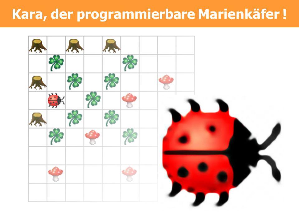 Kara-Steckbrief Worum gehts Einführung in Programmierdenken Für wen Schüler/innen ohne oder mit wenig Programmiererfahrung Lernziele Grundlagen der Programmierung Modell der endlichen Automaten Einsatz- dauer 6-12 Lektionen Technik Java 1.2, JRE, keine Installation.
