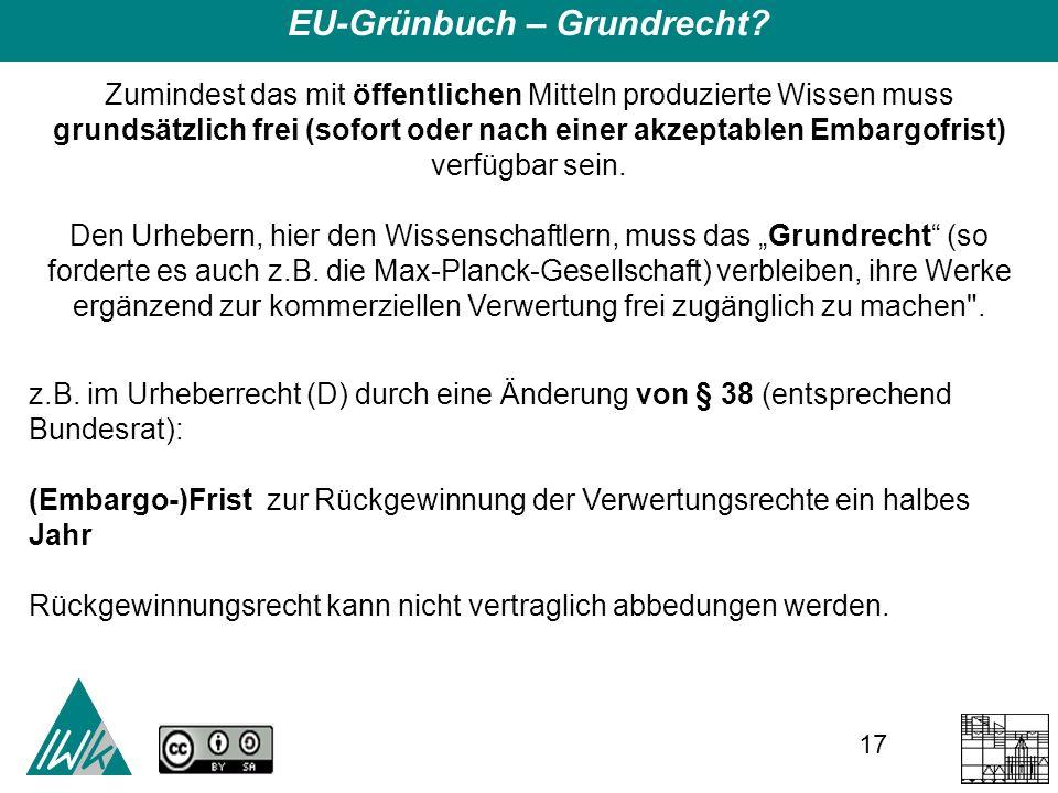 17 EU-Grünbuch – Grundrecht.