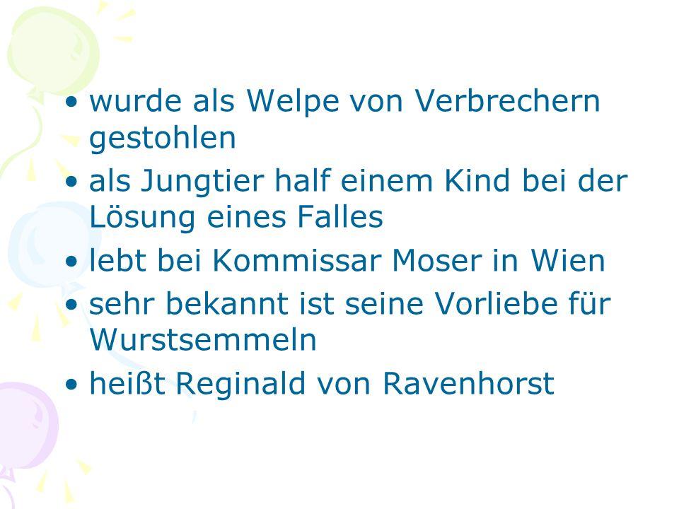 wurde als Welpe von Verbrechern gestohlen als Jungtier half einem Kind bei der Lösung eines Falles lebt bei Kommissar Moser in Wien sehr bekannt ist seine Vorliebe für Wurstsemmeln heißt Reginald von Ravenhorst