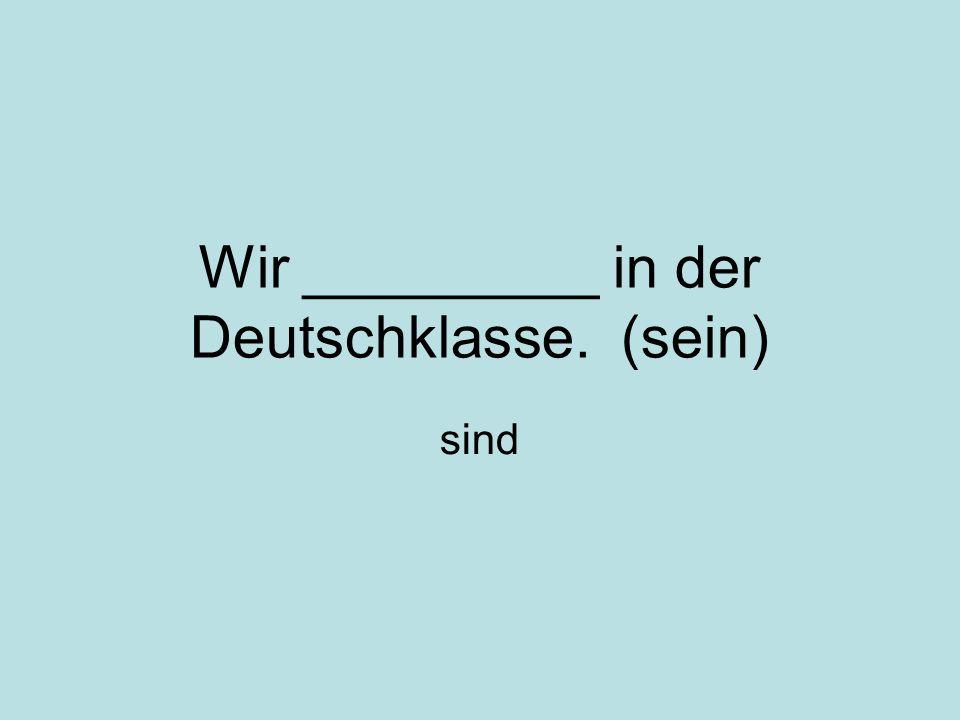 Wir _________ in der Deutschklasse. (sein) sind