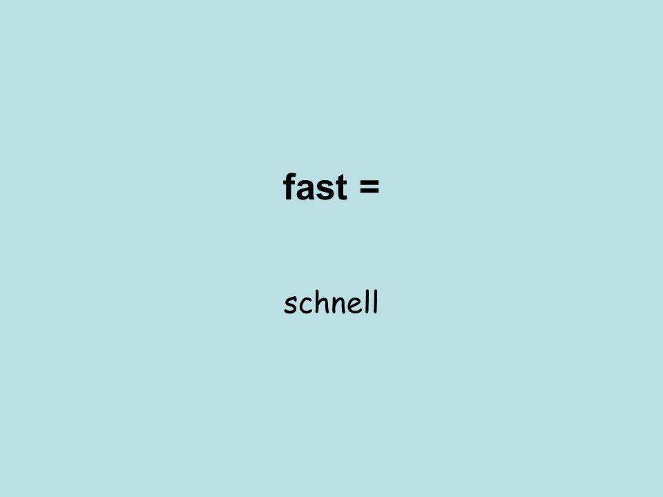 fast = schnell