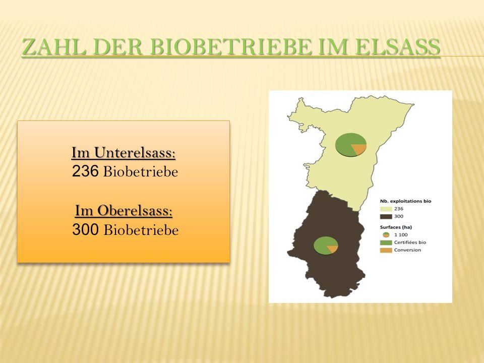 ZAHL DER BIOBETRIEBE IM ELSASS Im Unterelsass: 236 Biobetriebe Im Oberelsass: 300 Biobetriebe Im Unterelsass: 236 Biobetriebe Im Oberelsass: 300 Biobetriebe