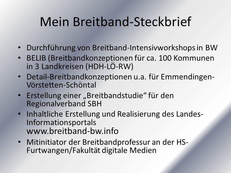 Mein Breitband-Steckbrief Durchführung von Breitband-Intensivworkshops in BW BELIB (Breitbandkonzeptionen für ca. 100 Kommunen in 3 Landkreisen (HDH-L
