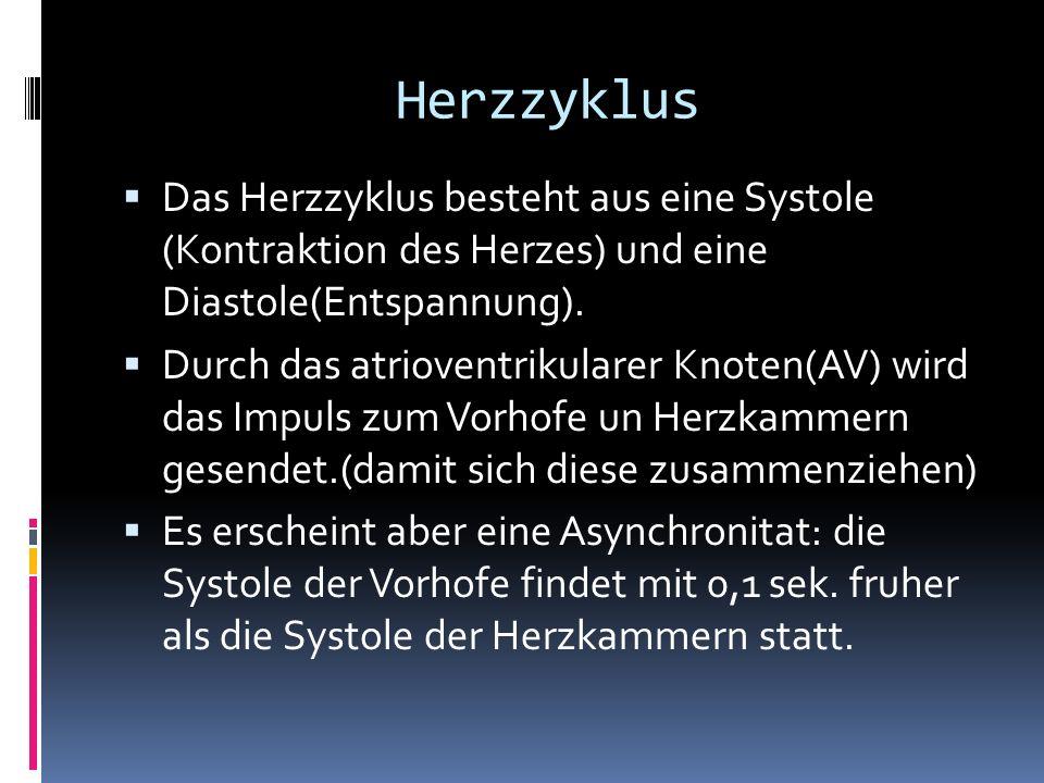 Herzzyklus Das Herzzyklus besteht aus eine Systole (Kontraktion des Herzes) und eine Diastole(Entspannung). Durch das atrioventrikularer Knoten(AV) wi