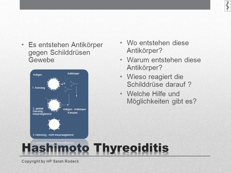 Es entstehen Antikörper gegen Schilddrüsen Gewebe Wo entstehen diese Antikörper? Warum entstehen diese Antikörper? Wieso reagiert die Schilddrüse dara