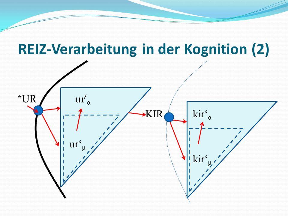 REIZ-Verarbeitung in der Kognition (2) *URur α KIR kir α ur μ kir μ