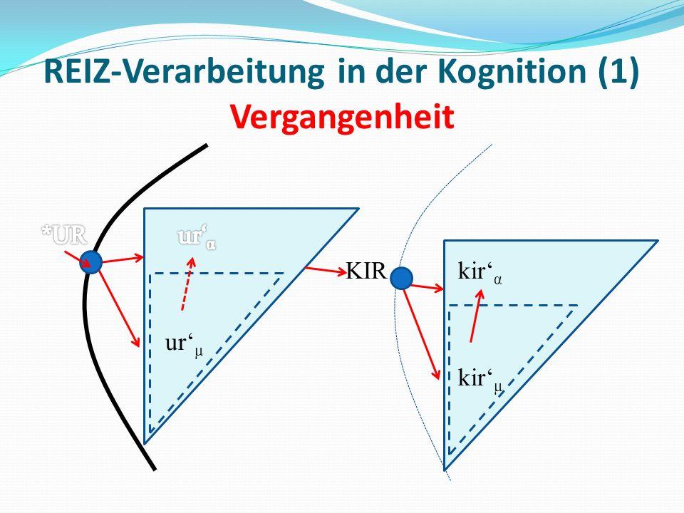 REIZ-Verarbeitung in der Kognition (1) Vergangenheit