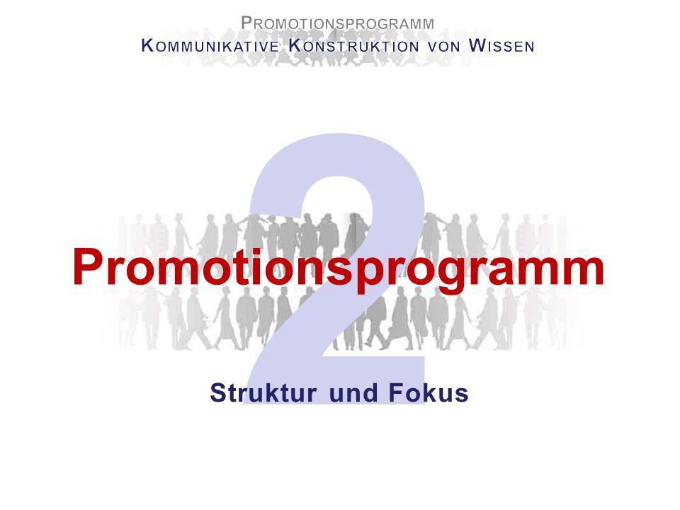 2 Promotionsprogramm Struktur und Fokus