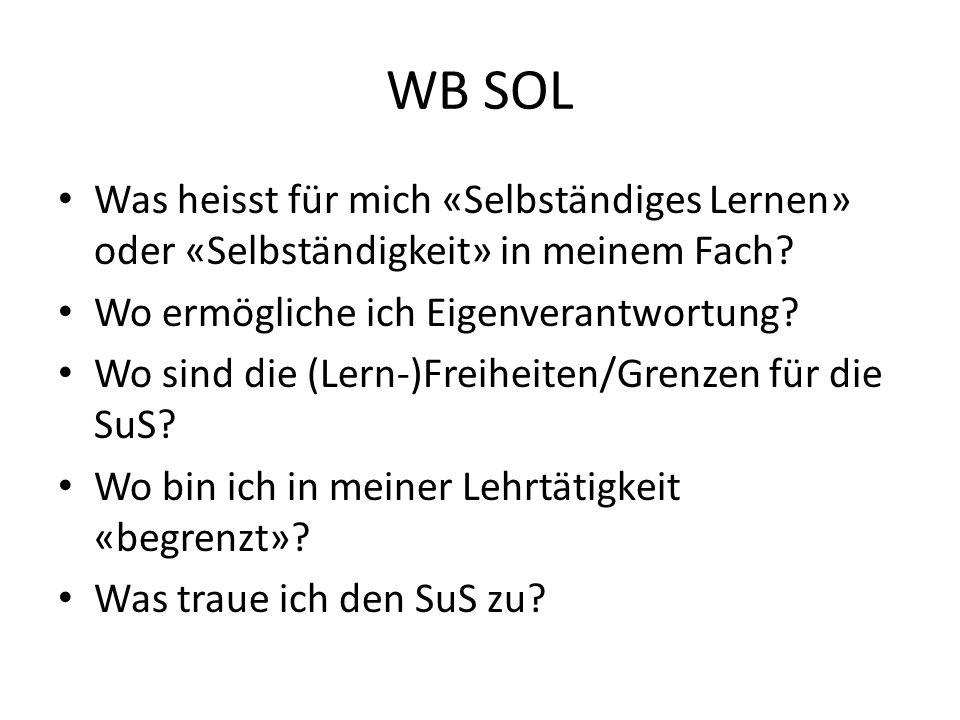 WB SOL Was heisst für mich «Selbständiges Lernen» oder «Selbständigkeit» in meinem Fach? Wo ermögliche ich Eigenverantwortung? Wo sind die (Lern-)Frei