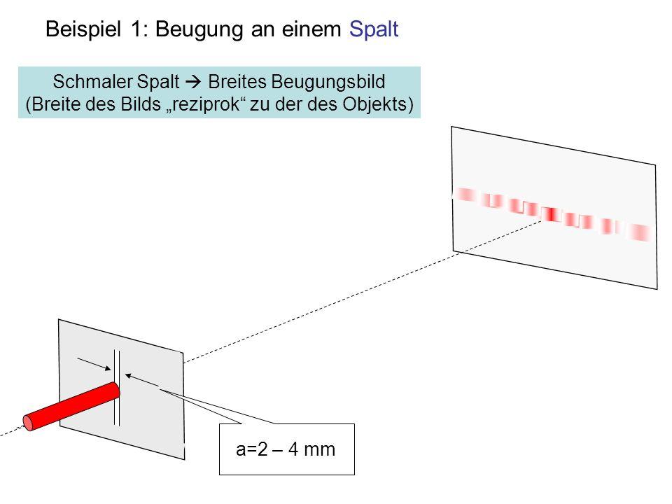Beispiel 1: Beugung an einem Spalt a=2 – 4 mm Schmaler Spalt Breites Beugungsbild (Breite des Bilds reziprok zu der des Objekts)
