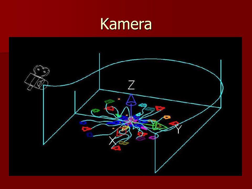 Aufnahme Es gibt eine Kamerafahrt um die Animation selbst herum.