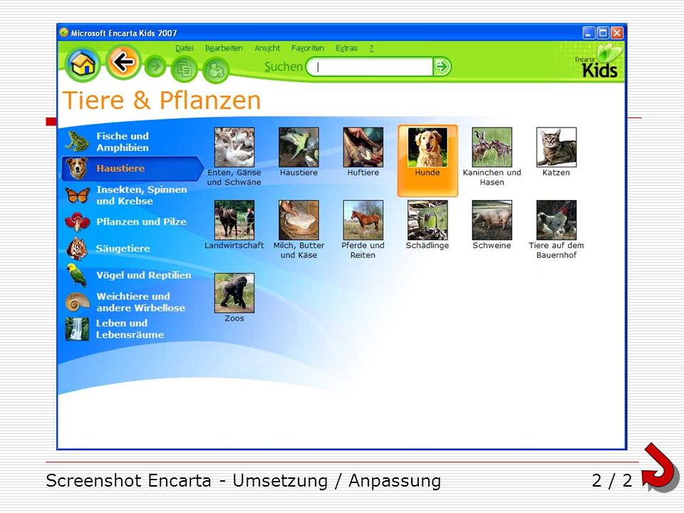 Screenshot Encarta - Umsetzung / Anpassung2 / 2