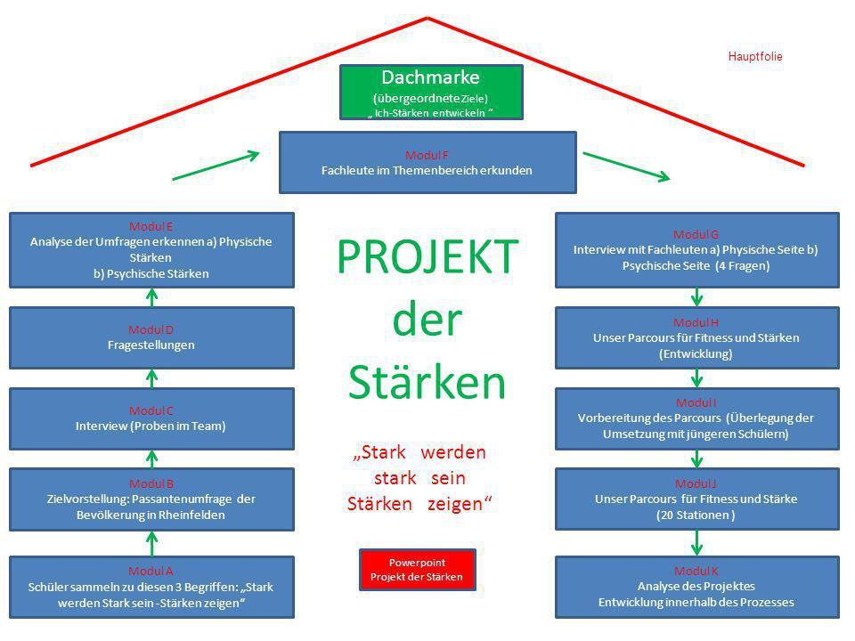 Diskussion, Weiterentwicklung, Nachhaltigkeit Gemeinsamer Aktionsnachmittag ( 2009 mit Kickbox Weltmeister Ivan Babic o.ä.