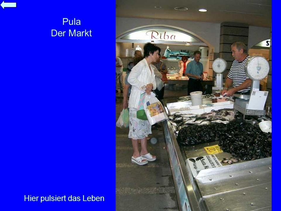 Pula Der Markt Hier pulsiert das Leben
