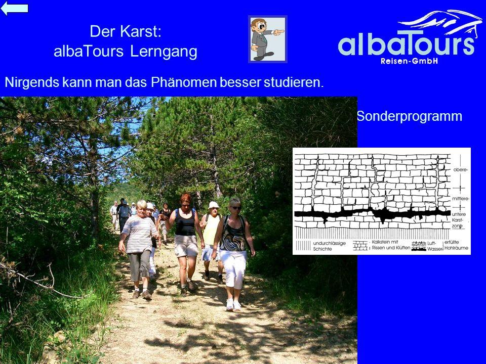 Der Karst: albaTours Lerngang Sonderprogramm Nirgends kann man das Phänomen besser studieren.