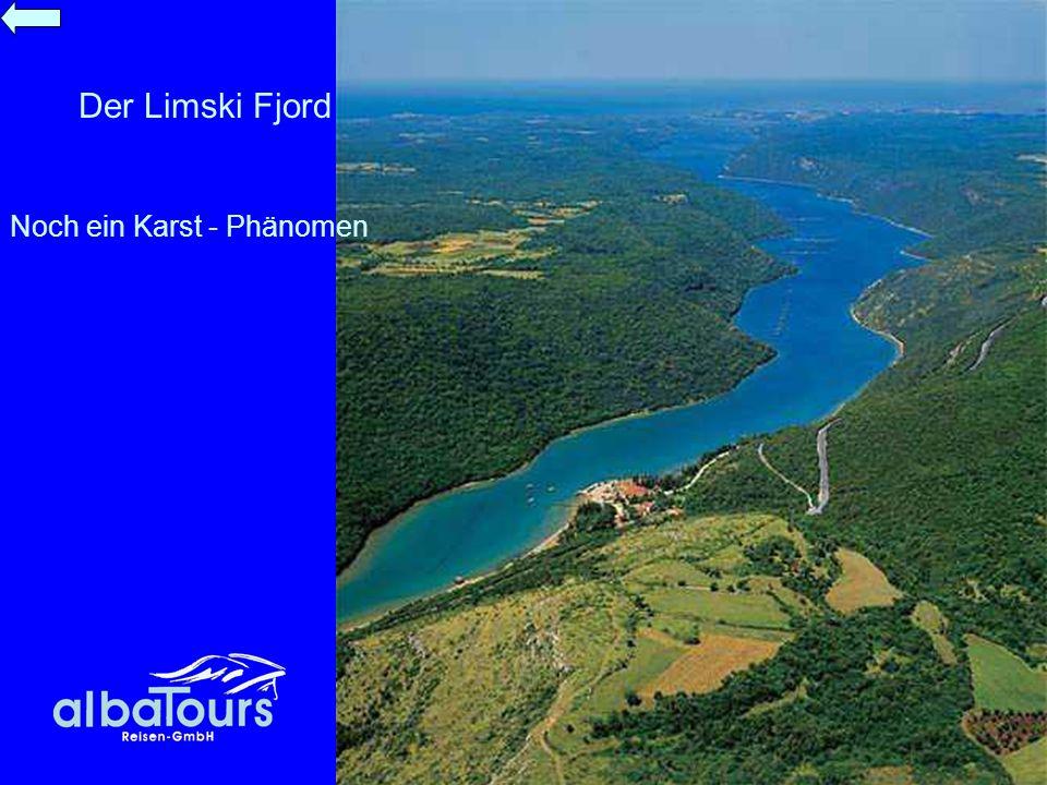 Der Limski Fjord Noch ein Karst - Phänomen