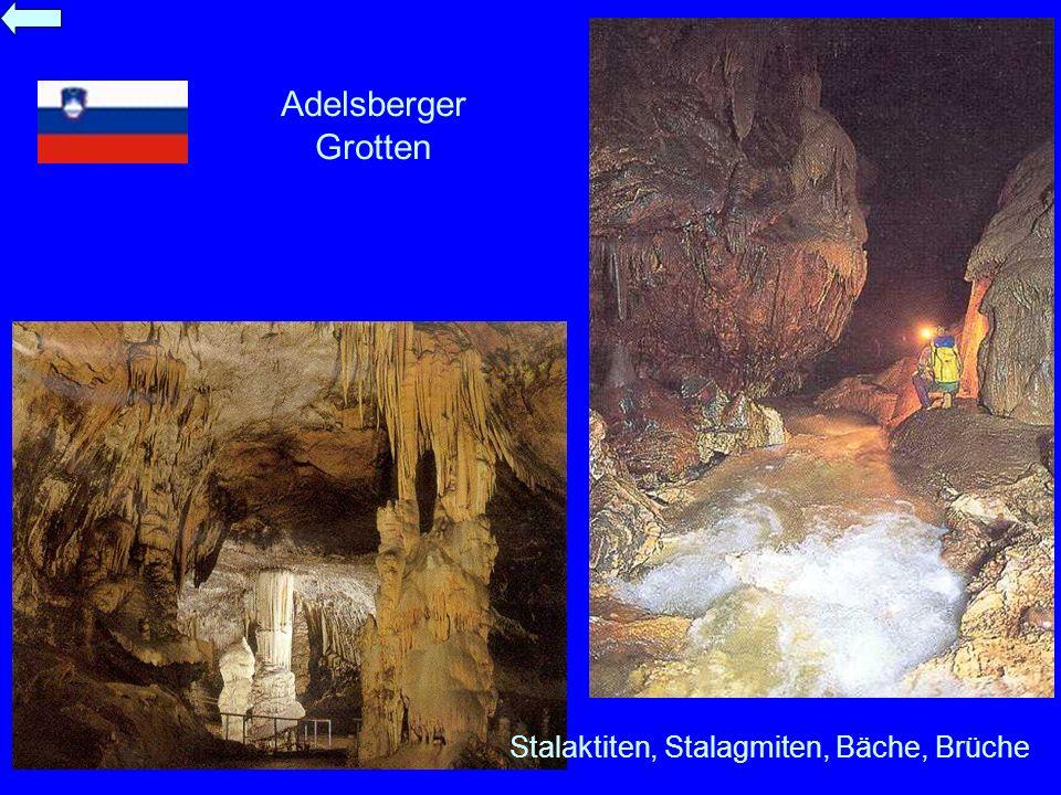 Adelsberger Grotten Stalaktiten, Stalagmiten, Bäche, Brüche