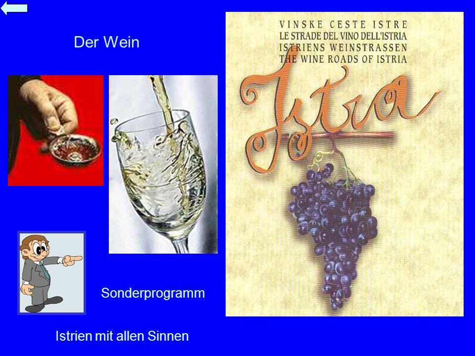 Der Wein Sonderprogramm Istrien mit allen Sinnen