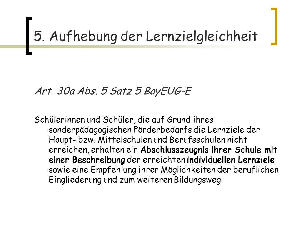 5.Aufhebung der Lernzielgleichheit Art. 30a Abs.