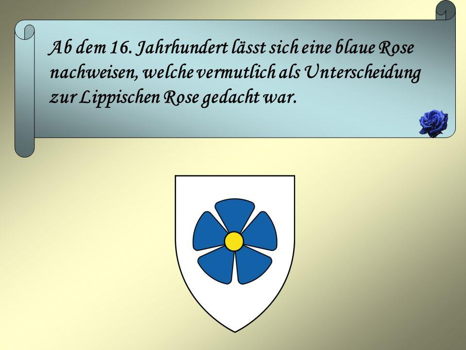 Ab dem 16. Jahrhundert lässt sich eine blaue Rose nachweisen, welche vermutlich als Unterscheidung zur Lippischen Rose gedacht war.