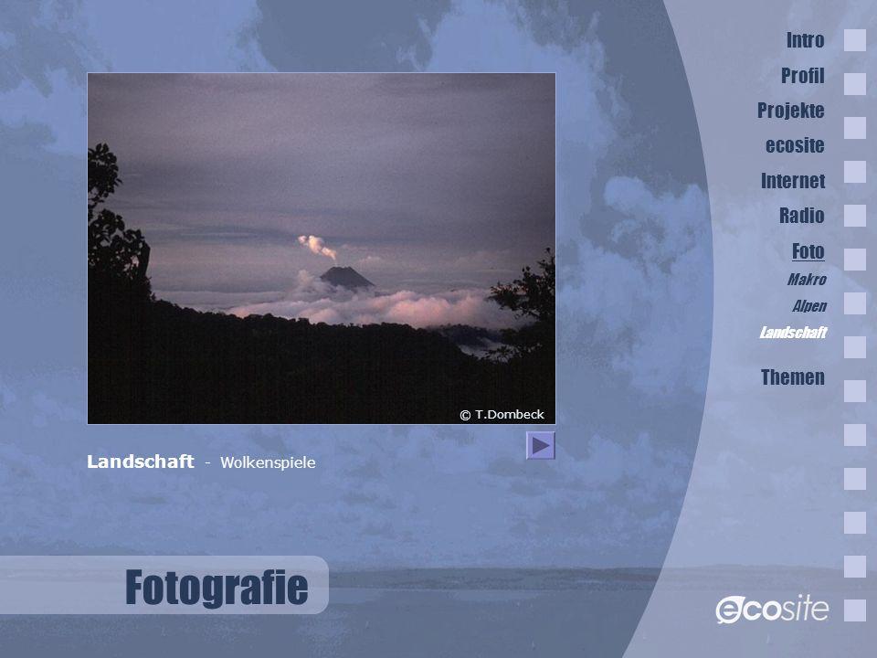 Fotografie Landschaft - Wolkenspiele © T.Dombeck Intro Profil Projekte ecosite Internet Radio Foto Makro Alpen Landschaft Themen
