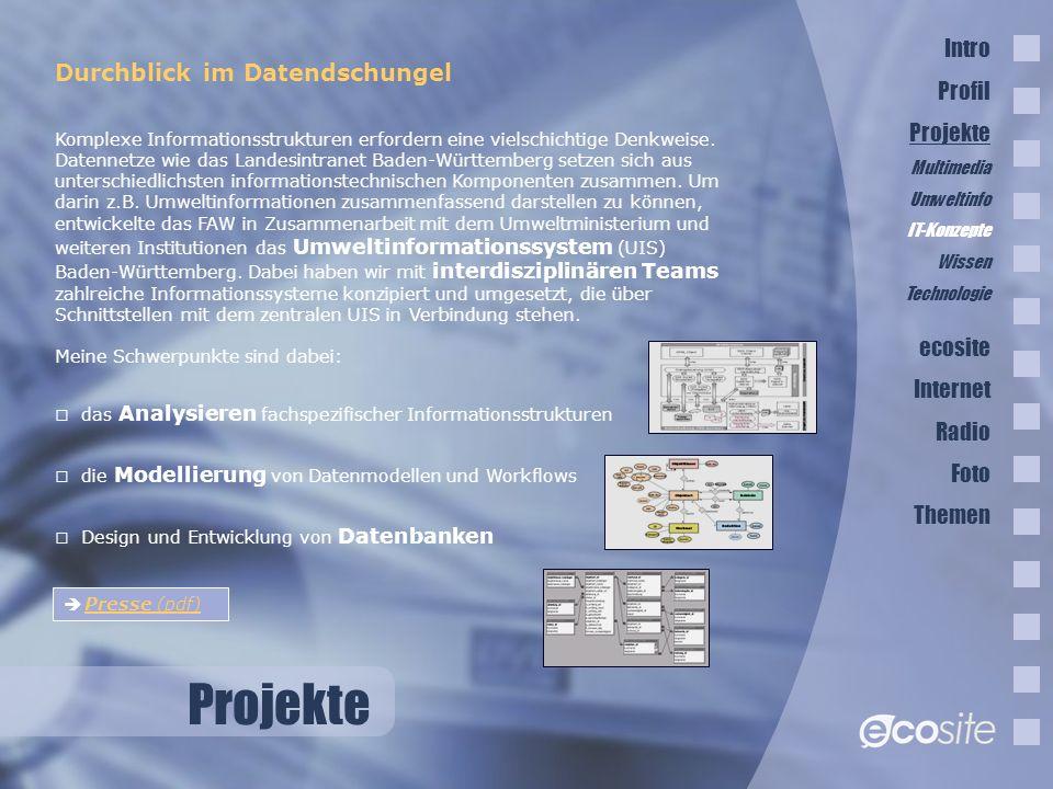 Projekte Durchblick im Datendschungel Komplexe Informationsstrukturen erfordern eine vielschichtige Denkweise.