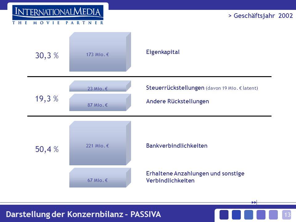 13 > Geschäftsjahr 2002 Darstellung der Konzernbilanz - PASSIVA 173 Mio. 23 Mio. 87 Mio. 221 Mio. 67 Mio. 30,3 % 50,4 % Eigenkapital Steuerrückstellun