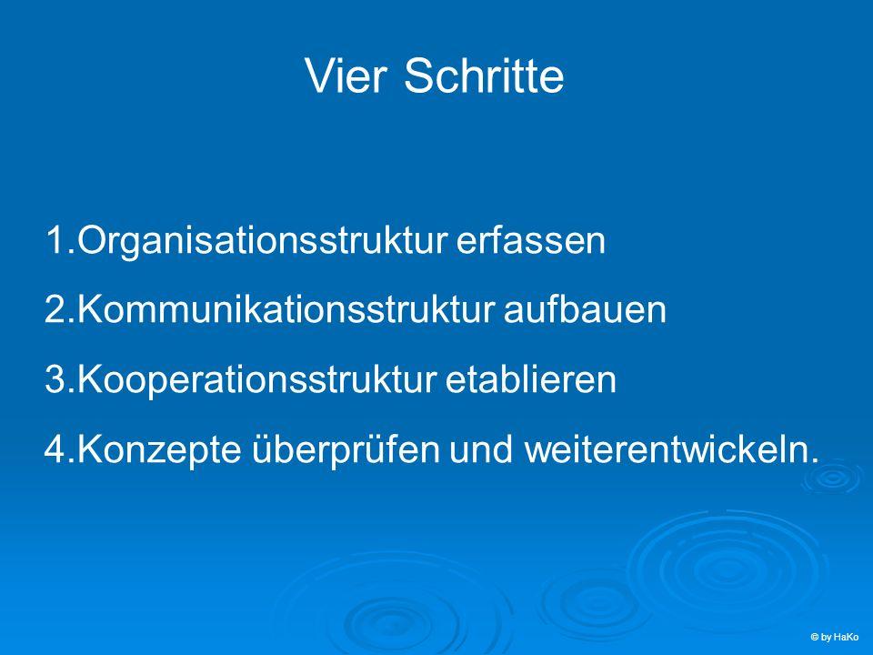 Vier Schritte 1.Organisationsstruktur erfassen 2.Kommunikationsstruktur aufbauen 3.Kooperationsstruktur etablieren 4.Konzepte überprüfen und weiterent