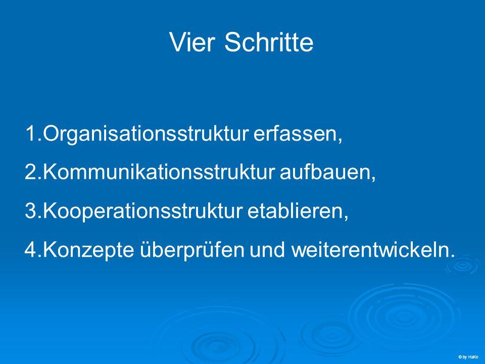 Vier Schritte 1.Organisationsstruktur erfassen, 2.Kommunikationsstruktur aufbauen, 3.Kooperationsstruktur etablieren, 4.Konzepte überprüfen und weiter