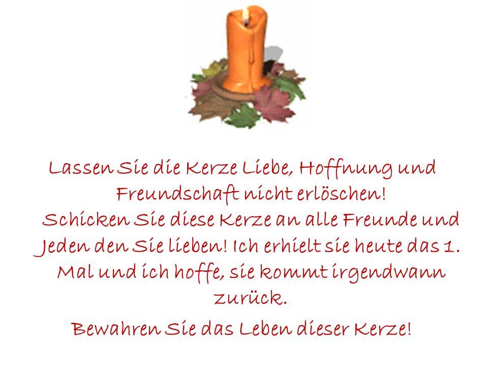 Diese Kerze wurde am 15. September, 1998 angezündet. Jemand wie Sie hat dazu beigetragen, sie am Leben zu erhalten.