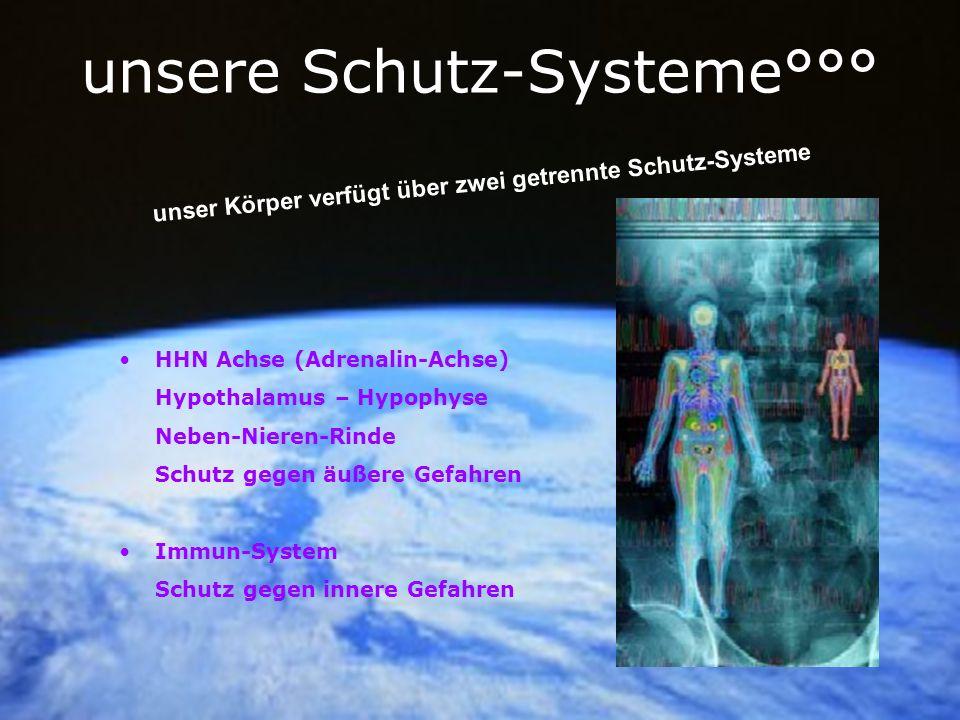 unsere Schutz-Systeme°°° HHN Achse (Adrenalin-Achse) Hypothalamus – Hypophyse Neben-Nieren-Rinde Schutz gegen äußere Gefahren Immun-System Schutz gege