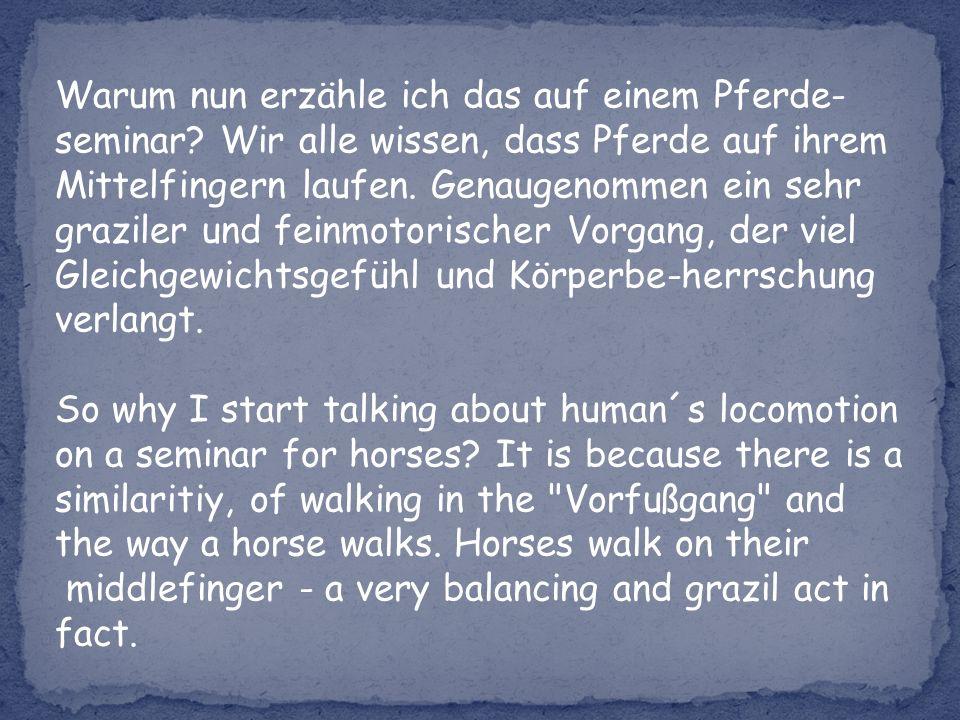 Warum nun erzähle ich das auf einem Pferde- seminar.