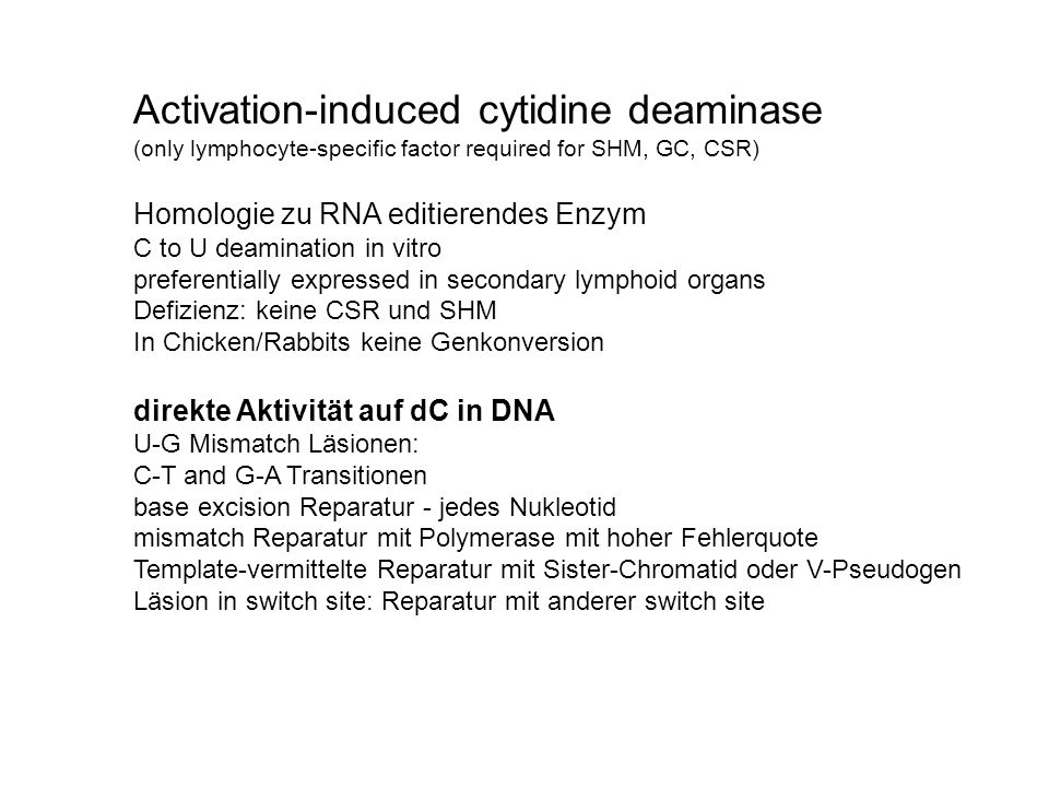 Activation-induced cytidine deaminase (only lymphocyte-specific factor required for SHM, GC, CSR) Homologie zu RNA editierendes Enzym C to U deamination in vitro preferentially expressed in secondary lymphoid organs Defizienz: keine CSR und SHM In Chicken/Rabbits keine Genkonversion direkte Aktivität auf dC in DNA U-G Mismatch Läsionen: C-T and G-A Transitionen base excision Reparatur - jedes Nukleotid mismatch Reparatur mit Polymerase mit hoher Fehlerquote Template-vermittelte Reparatur mit Sister-Chromatid oder V-Pseudogen Läsion in switch site: Reparatur mit anderer switch site