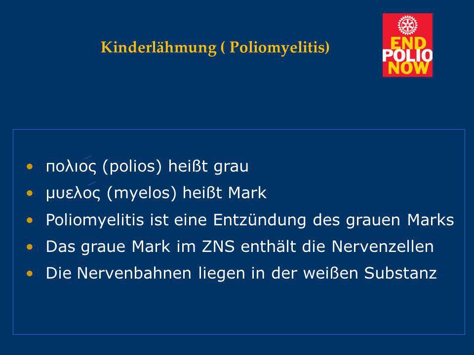 Kinderlähmung ( Poliomyelitis) Kinderlähmung ( Poliomyelitis) Virus-Entzündung zerstört motorische Nervenzel- Virus-Entzündung zerstört motorische Nervenzel- len im Rückenmark.