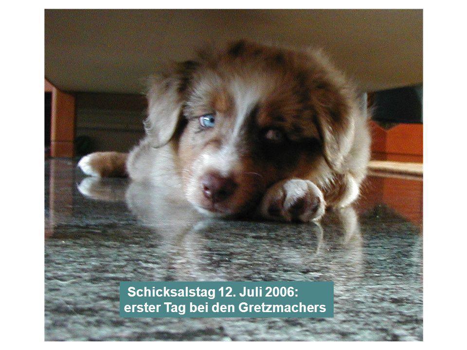 Schicksalstag 12. Juli 2006: erster Tag bei den Gretzmachers