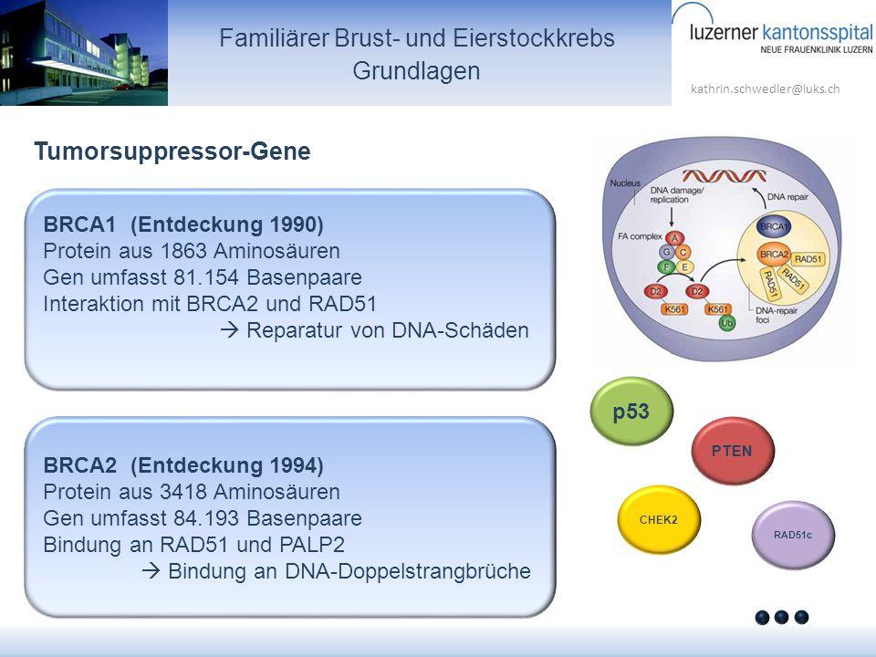 kathrin.schwedler@luks.ch Familiärer Brust- und Eierstockkrebs Grundlagen BRCA1 (Entdeckung 1990) Protein aus 1863 Aminosäuren Gen umfasst 81.154 Base