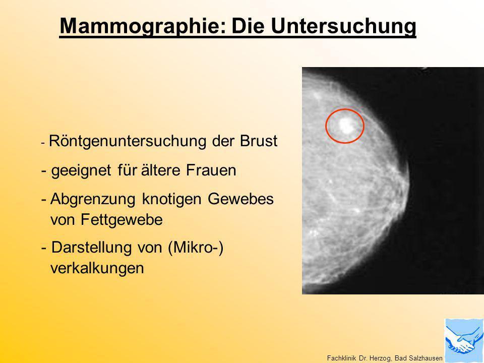 Mammographie: Die Untersuchung - Röntgenuntersuchung der Brust - geeignet für ältere Frauen - Abgrenzung knotigen Gewebes von Fettgewebe - Darstellung