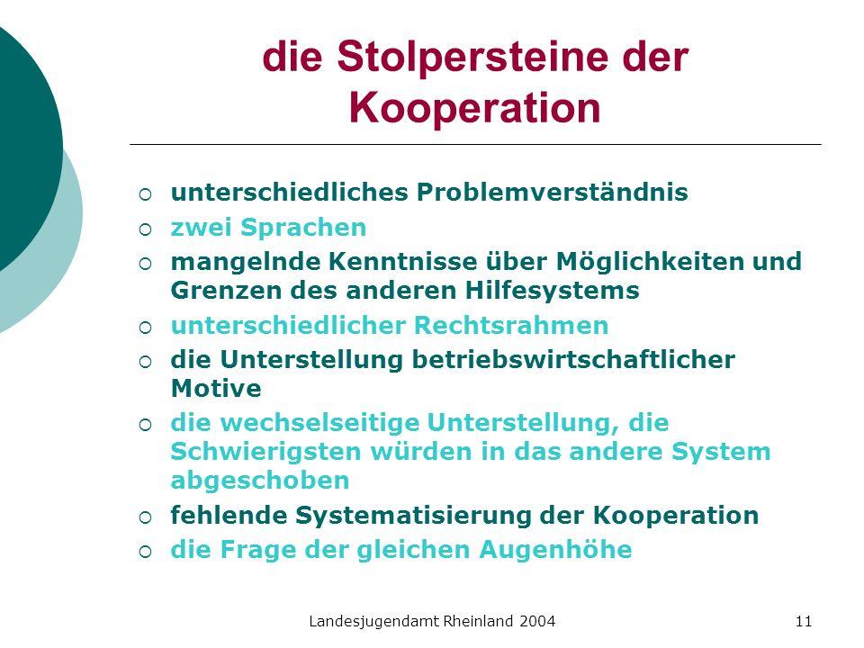 Landesjugendamt Rheinland 200411 die Stolpersteine der Kooperation unterschiedliches Problemverständnis zwei Sprachen mangelnde Kenntnisse über Möglic