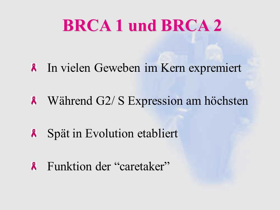 Quellen: Quellen: Functions of BRCA1 + 2 in the biological response to DNA Damage Venkitaraman Cancer Susceptibility and the functions of BRCA1 und 2 Venkitaraman Tumor Suppressor Gene BRCA 1 is Expressed by embryonic + adult neuronal stem cells + involved in cell proliferation Korhonen Breast cancer prevention-clinical trials strategies aromatase inhibitors Goss Weitere Quellen: http://stephen.johnston.faculty.noctrl.edu/360/CancerOutlines.pdf http://www.onkologie.de/index.php?csrc=http://www.onkologie.de/public/ krebs/krebsarten/c_brustkrebs.html http://cancer.gov/cancerinformation http://breastcancer.about.com