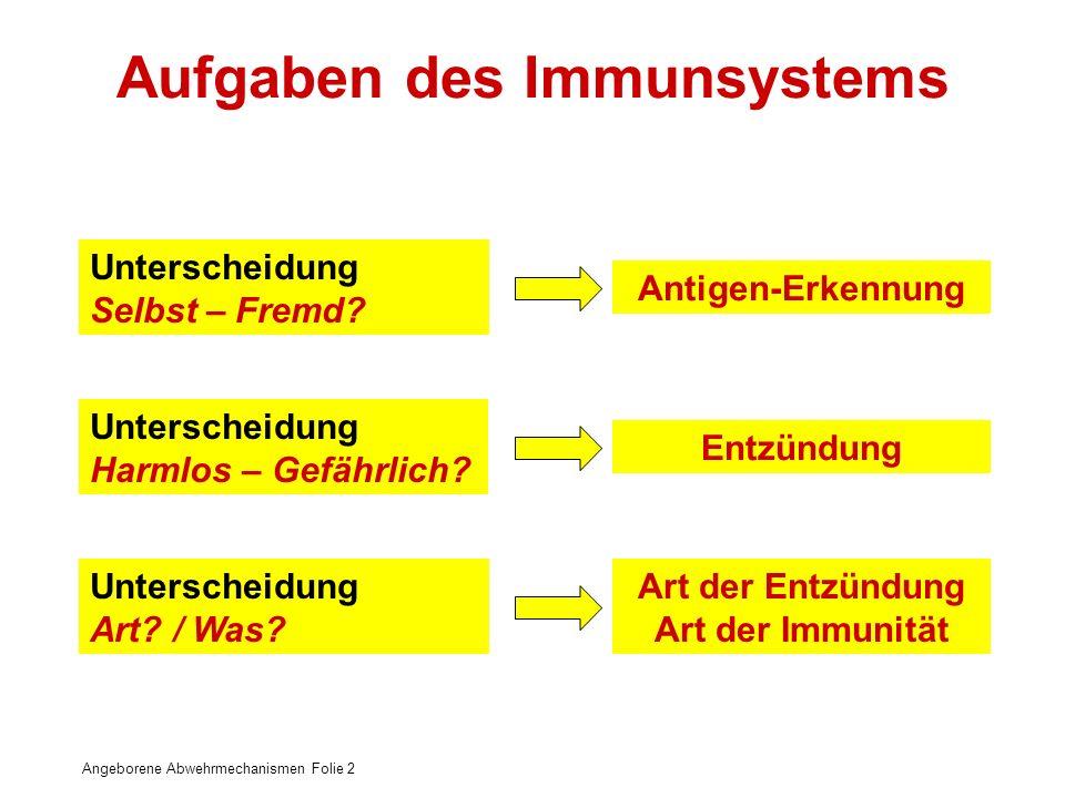 Angeborene Abwehrmechanismen Folie 2 Unterscheidung Selbst – Fremd? Antigen-Erkennung Unterscheidung Harmlos – Gefährlich? Entzündung Unterscheidung A