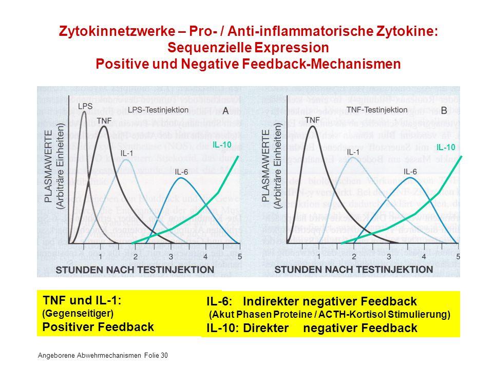 Angeborene Abwehrmechanismen Folie 30 Zytokinnetzwerke – Pro- / Anti-inflammatorische Zytokine: Sequenzielle Expression Positive und Negative Feedback
