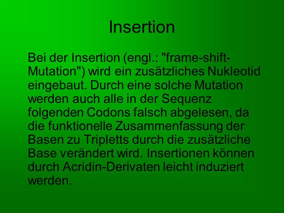 Deletion Bei der Deletion wird eine Base aus der DNA entfernt.