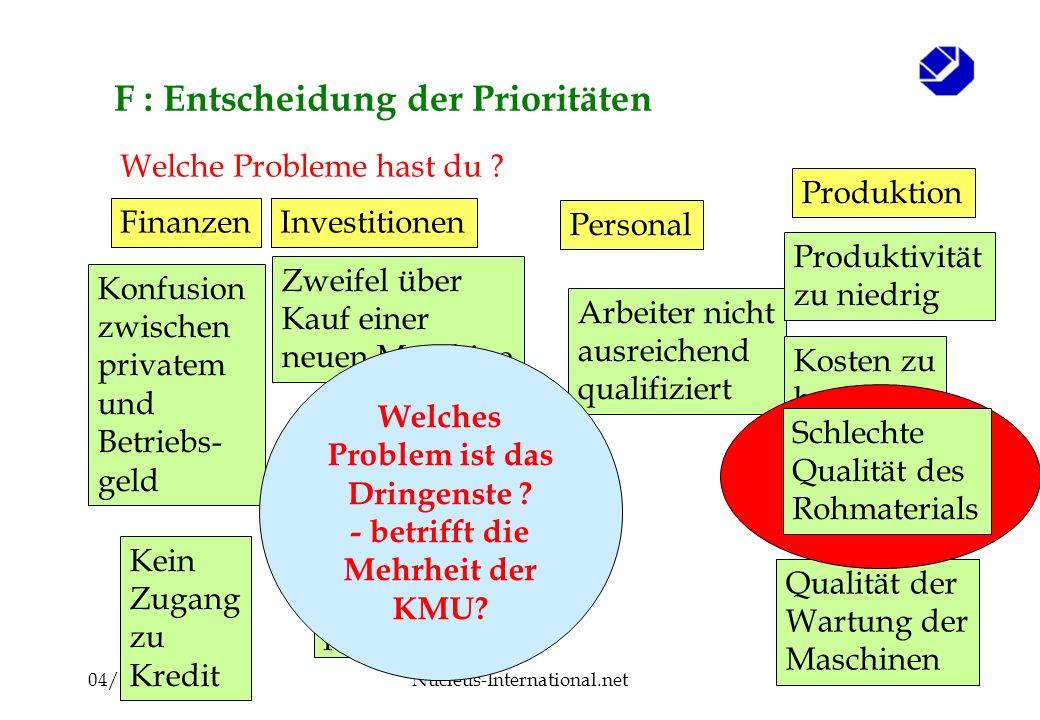 04/2008Nucleus-International.net44 F : Entscheidung der Prioritäten Arbeiter nicht ausreichend qualifiziert Welche Probleme hast du .