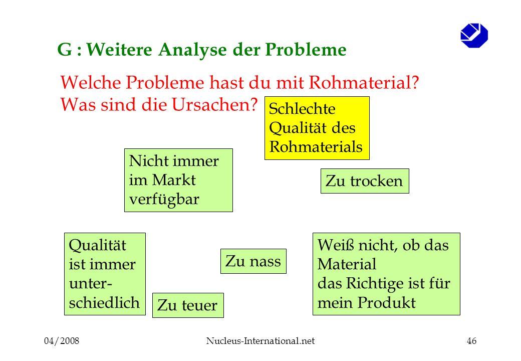 04/2008Nucleus-International.net46 G : Weitere Analyse der Probleme Welche Probleme hast du mit Rohmaterial.