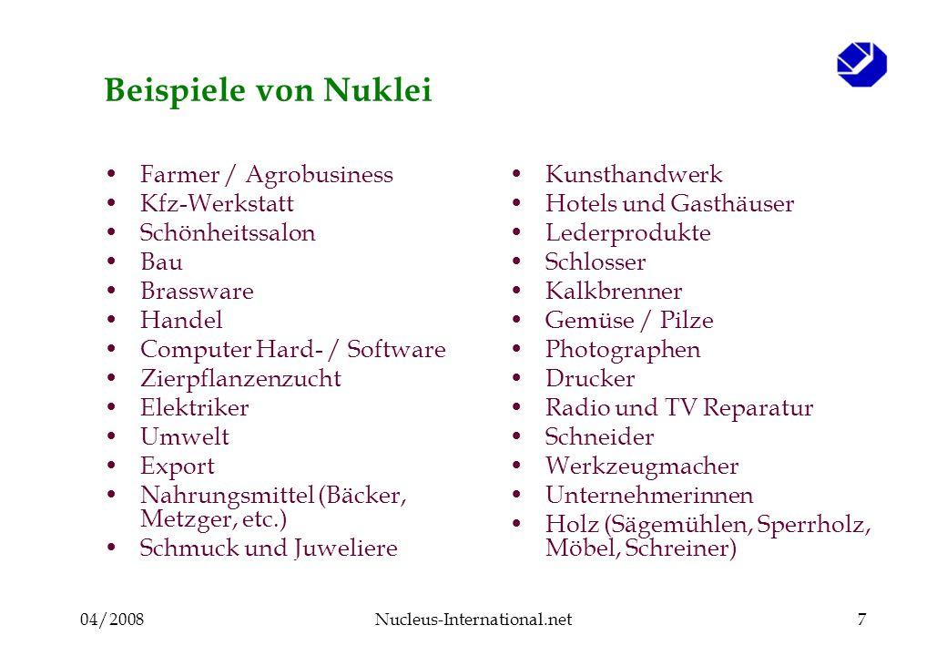 04/2008Nucleus-International.net18 Der Nukleusberater : Aufgaben Moderation Veranstaltungen Gruppen- Beratung Durchführung Aktivitäten Einzel- Beratung Mitglieder