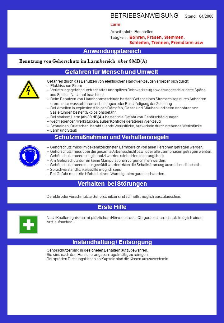 BETRIEBSANWEISUNG Stand: 04/2008 Lärm Arbeitsplatz: Baustellen Tätigkeit : Bohren, Fräsen, Stemmen. Schleifen, Trennen, Fremdlärm usw. Anwendungsberei