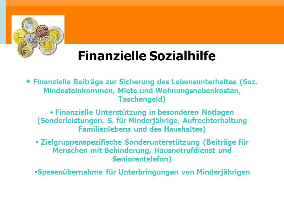 Finanzielle Beiträge zur Sicherung des Lebensunterhaltes (Soz. Mindesteinkommen, Miete und Wohnungsnebenkosten, Taschengeld) Finanzielle Unterstützung