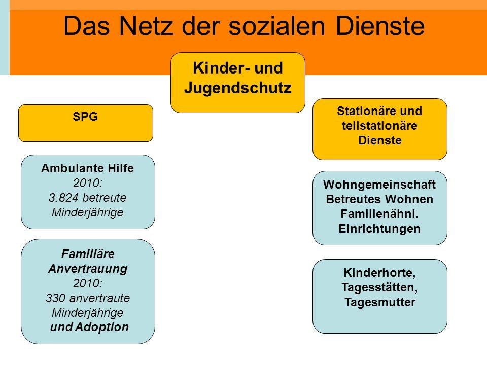 Das Netz der sozialen Dienste Kinder- und Jugendschutz Ambulante Hilfe 2010: 3.824 betreute Minderjährige Familiäre Anvertrauung 2010: 330 anvertraute